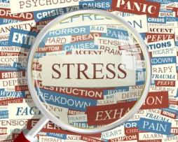 stress anxiété