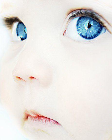 naissance programmation intra-utérine